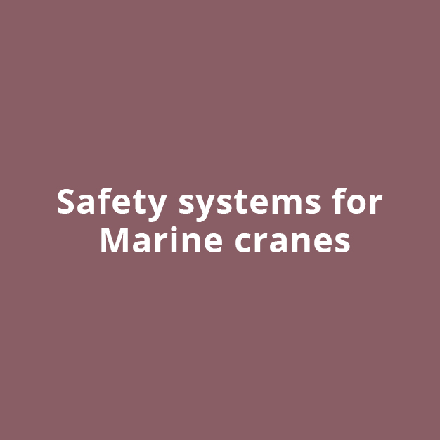 Safety System for Marine Cranes